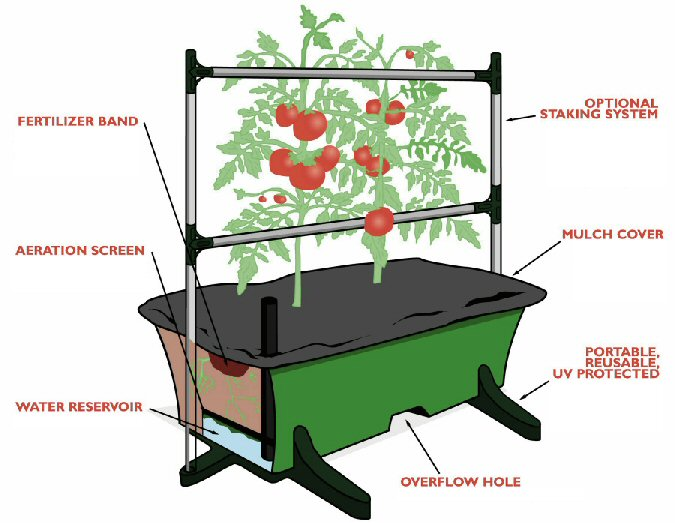 Grow Your Entire Garden in an Earthbox