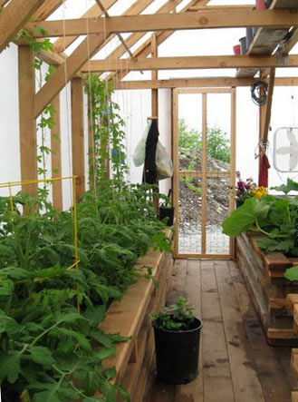 Grow in a greenhouse and enjoy your gardening hobby all year