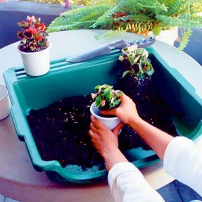 Portable Potting Tray